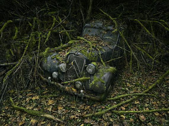 Питер Липпманн (570x428, 154Kb)
