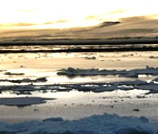 Арктика 2 (320x271, 53Kb)