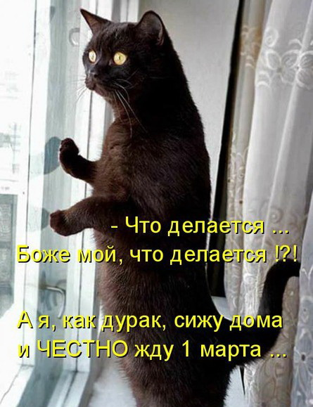 http://img0.liveinternet.ru/images/attach/c/2/84/218/84218626_003.jpg