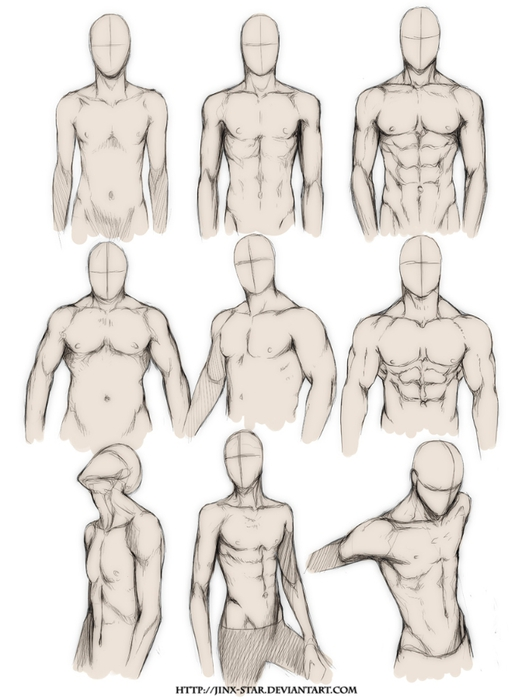 _body_type_study__by_jinx_star-d4n0r6t (529x700, 165Kb)