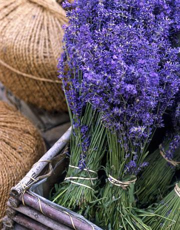 lavender-box-0908-de-79211080 (360x460, 74Kb)