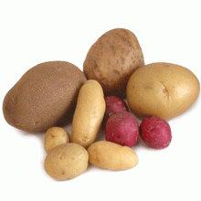 cartofi (220x220, 7Kb)