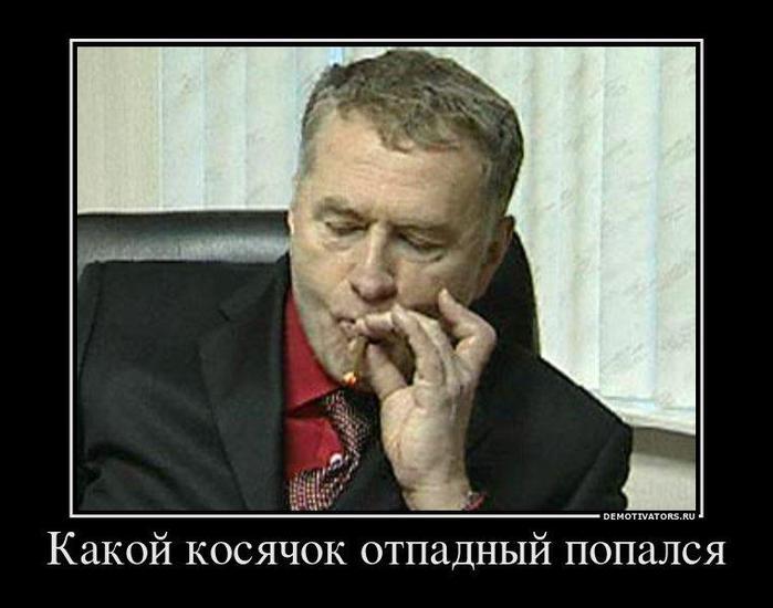 Жириновский и косяк выборы 2012 700x550 41kb