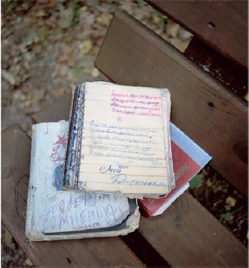 дневники полины (490x527, 230Kb)
