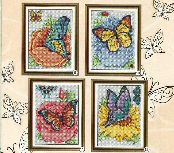 бабочки подборка1 (604x532, 395Kb)