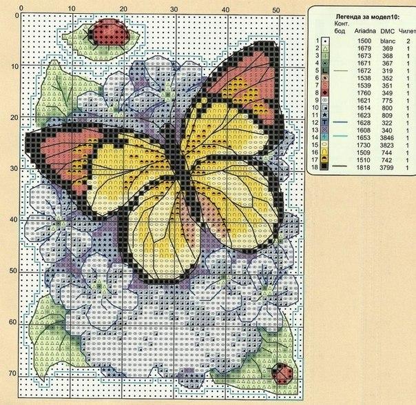 бабочки подборка3 (604x587, 465Kb)