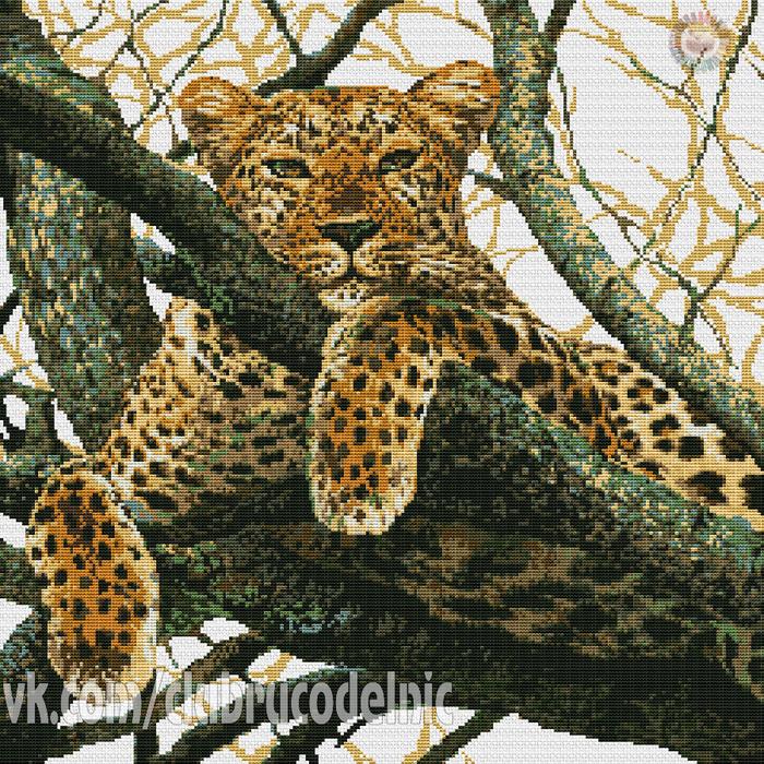 Leopard (700x700, 928Kb)