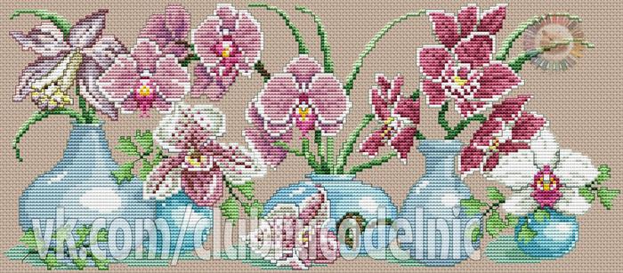 Orchids in vase (700x307, 359Kb)