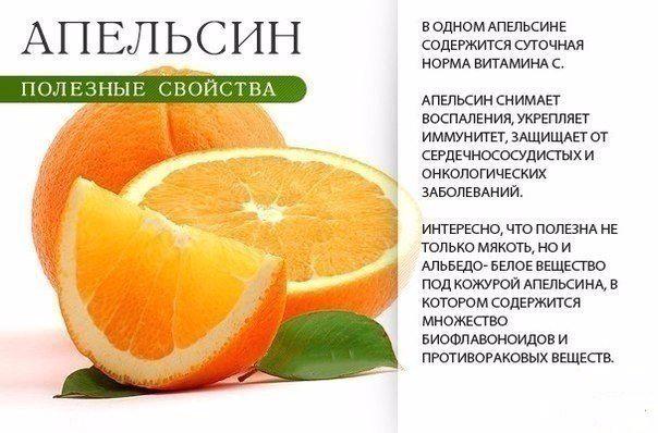 -Z2eiomhzcw (604x398, 198Kb)