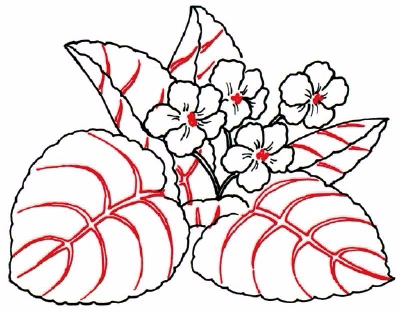 how-to-draw-flowers-and-plants-15 (400x313, 140Kb)