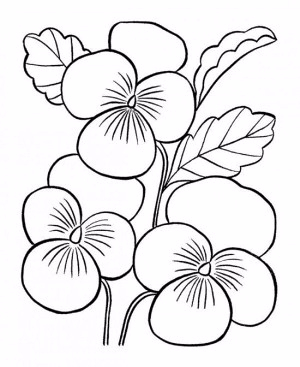 Mothers-Day-Coloring-Pages-Coloring-Sheets-Picture-3-550x672 (300x367, 84Kb)