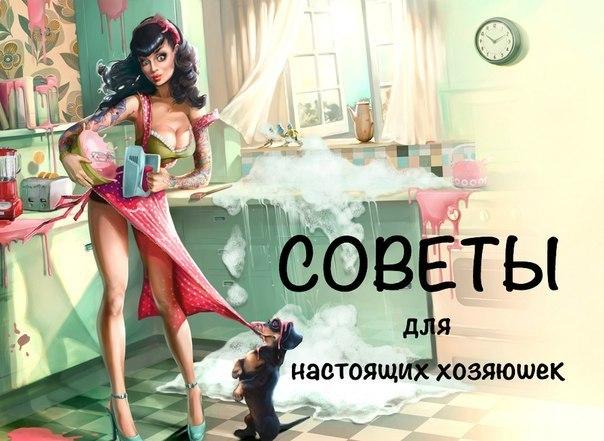 5365358_soveti_hozyaike (604x441, 66Kb)