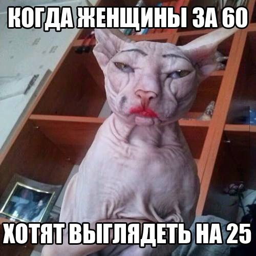 122100152_original__11_.jpg