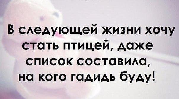 3416556_getImage_1_4_ (604x334, 34Kb)