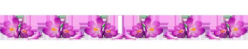 1429727872_0_125f7e_50ebcb6f_XL (500x100, 49Kb)