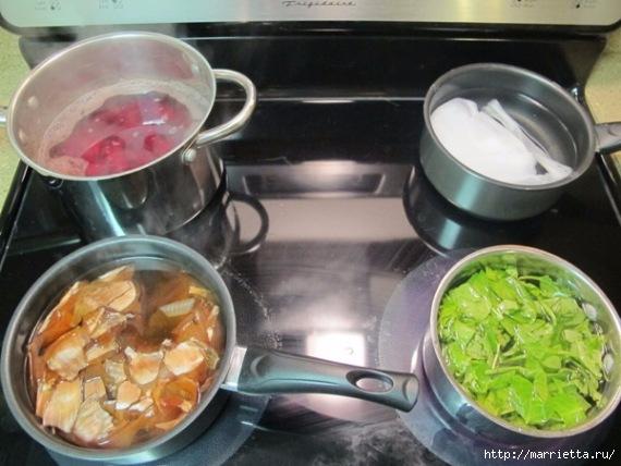 Как сделать фруктовые и овощные красители для ткани (6) (570x428, 152Kb)