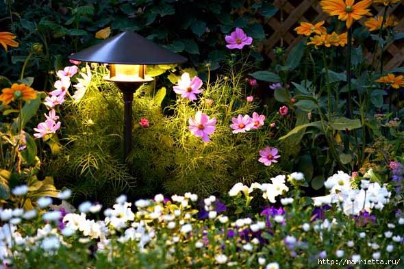 Правильное освещение – красивый сад (6) (590x393, 204Kb)