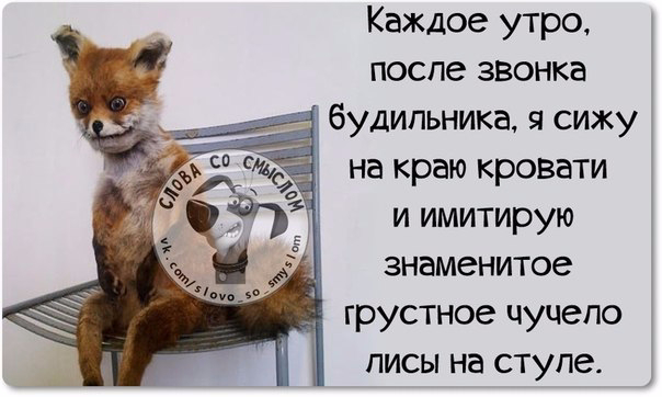 1430335526_frazki-7 (604x362, 143Kb)