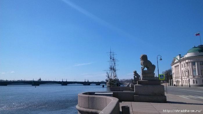 Ши-цза, Петербург (1) (700x394, 182Kb)