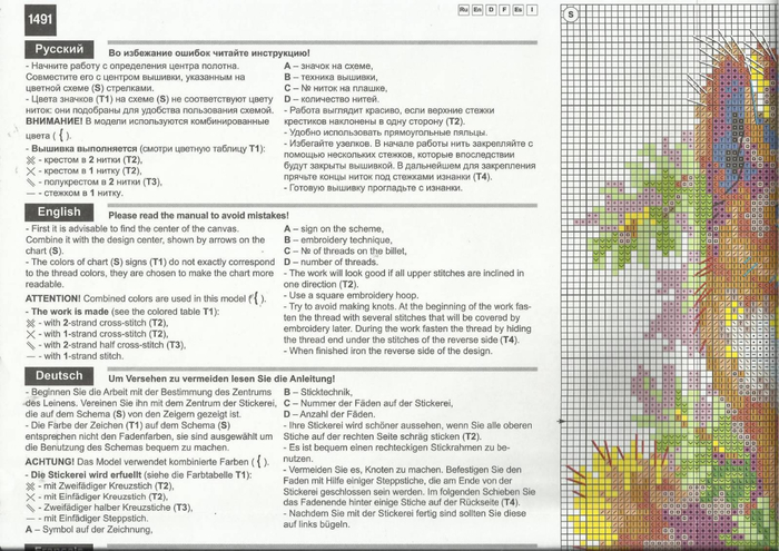 белки 7 (700x495, 342Kb)