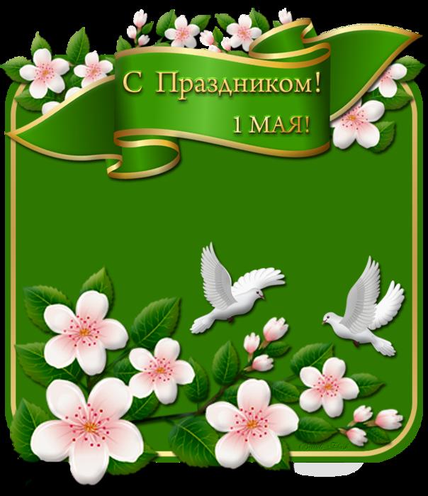 aramat_0T228 (604x700, 393Kb)