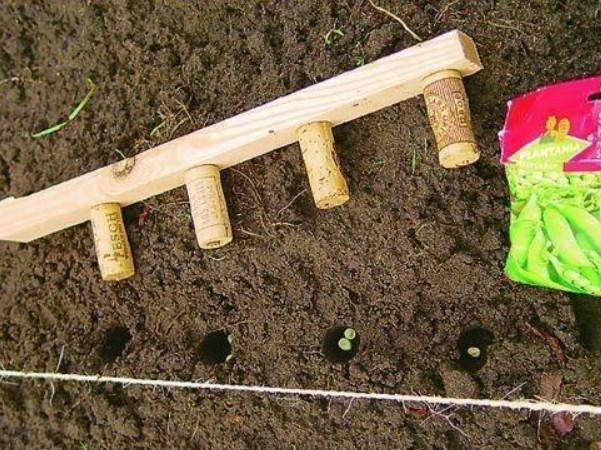 Приспособление для дачи и огорода своими руками
