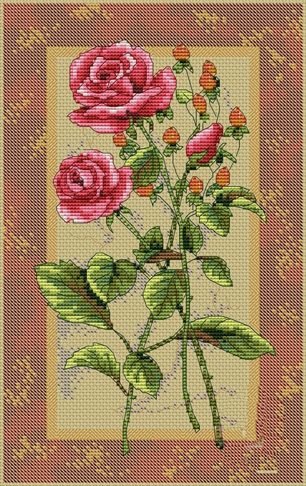 Rose-Splendor (441x700, 316Kb)