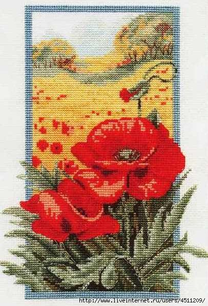 76865264_large_3971977_Needlepoise_Wild_Poppy (406x598, 181Kb)