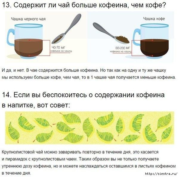 как заваривать чай10 (600x593, 201Kb)
