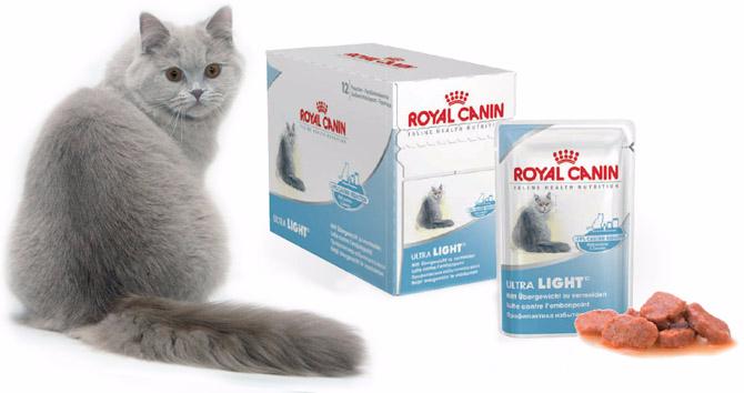 корма-для-кошек (670x354, 142Kb)