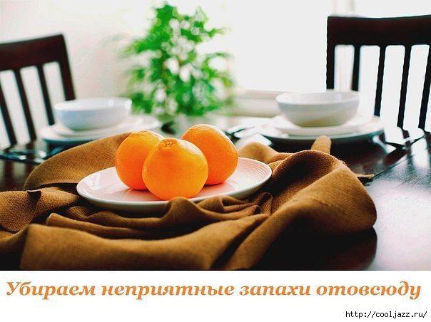 5365358_Kak_ybrat_nepriyatnie_zapahi_v_dome (604x452, 124Kb)