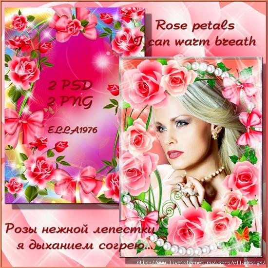 Rose-petals,-I-can-warm-breath (550x550, 311Kb)
