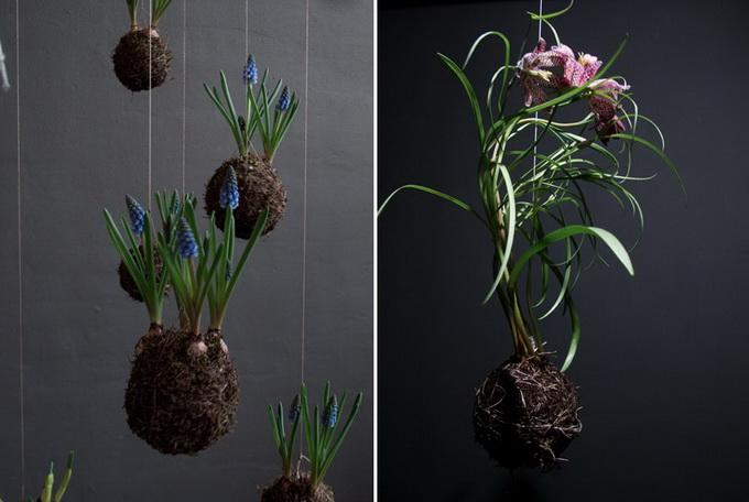 Интересное решение оформления парка предложил Федор ван дер Вальк, растения растут в земле