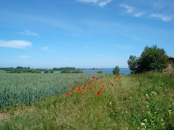 Вид на Висмарскую бухту близ пос. Хобен/836192_DSC06528 (700x525, 301Kb)