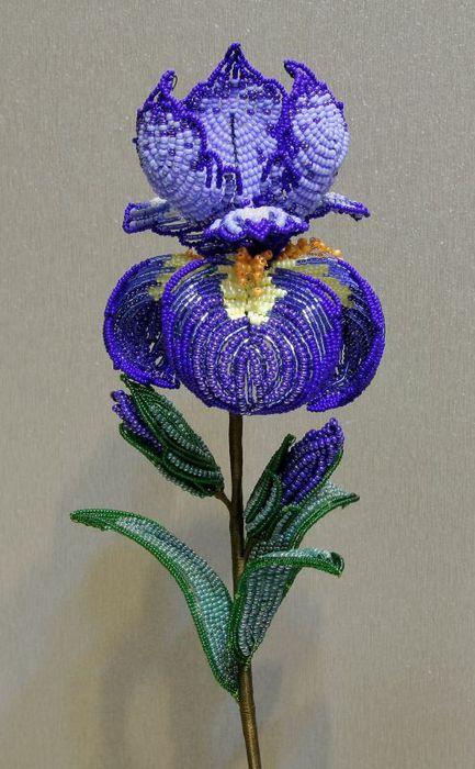 Сделала ирис сложный цветок однако