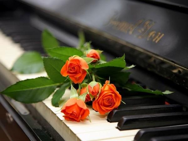 http://img0.liveinternet.ru/images/attach/c/3/74/957/74957170_rozuy_na_klaviature.jpg