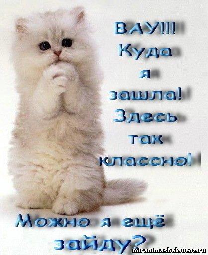 55737897_446612278 (418x513, 43Kb)