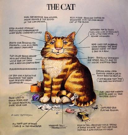 Терри пратчетт кот без дураков