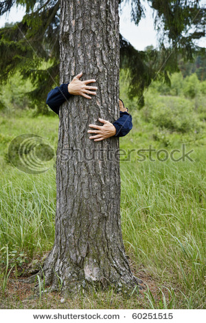 stock-photo-a-man-hugging-a-big-tree-in-the-forest-60251515[1] (300x470, 95Kb)