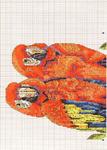 Превью papagayos_1 (500x700, 211Kb)