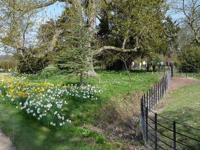 усадьба и ферма Вимпол Холл - Wimpole Hall 77727