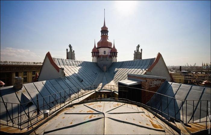 Виды Петербурга фото руфера Виталия Раскалова 5