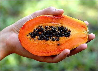 fruit_Papaya415 (415x304, 19Kb)