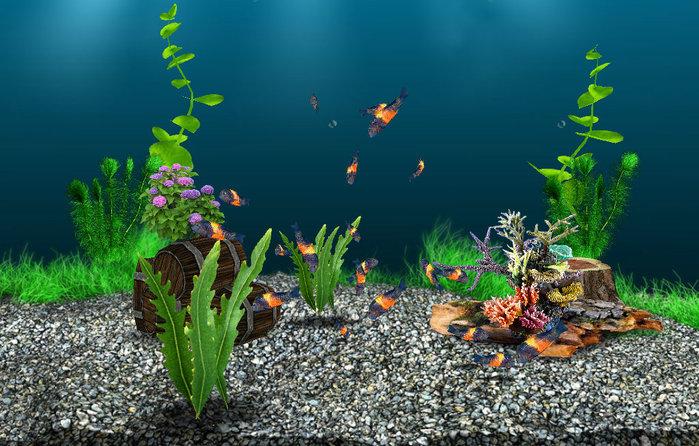 Adav. Просмотров. АкваМир.3D аквариум. . Вконтакте баги, взлом.