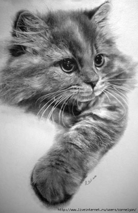 Кошка - схема вышивки крестом.