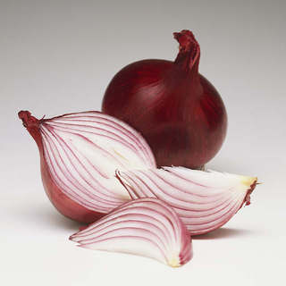 jodies-onion-fact-21221837 (320x320, 10Kb)