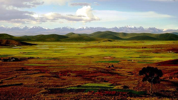 altiplano (700x393, 142Kb)