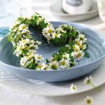 Превью aromatic-spice-herbs-decoration1-7 (600x600, 88Kb)