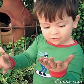 травяные сборы от глистов и паразитов