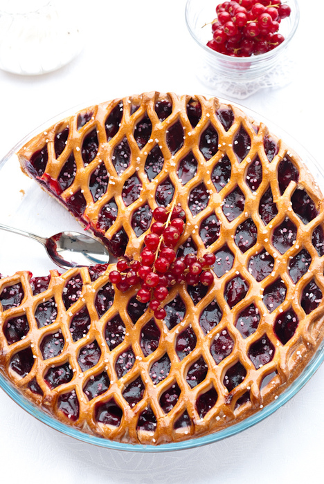 пирог /4278666_5208434365_de358090ea_pie_with_currant_L (468x700, 271Kb)
